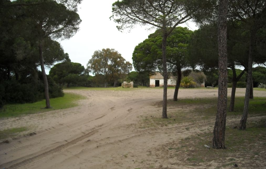 Captura8doñana